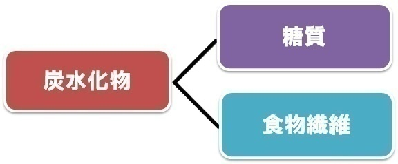 炭水化物・糖質図